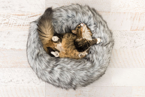 Giro cat bed - Luxurious elegance for the one you love