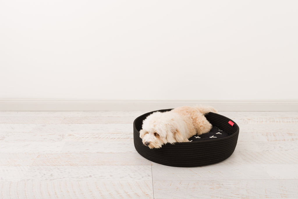 Introducing the durable Corda rope basket for dogs
