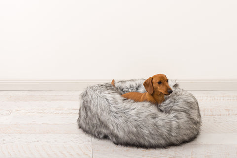 The Giro dog bed - Luxurious elegance for the one you love