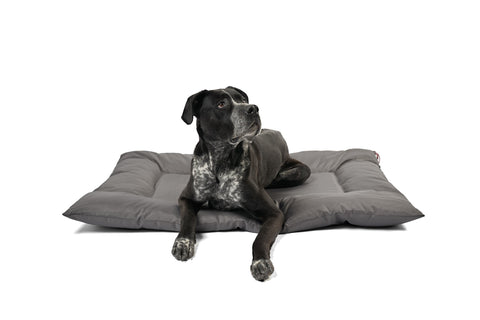 The Prima Mat For Dirty Dogs - Anti-Bacterial, Stain Repellent and Odor Resistant