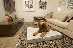 The Velluto - a statement in luxury and style your dog will LOVE!