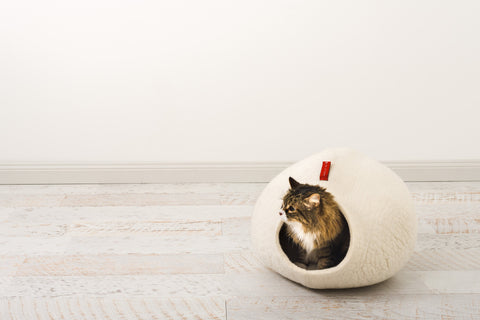 Image of The Sogno bed for cats