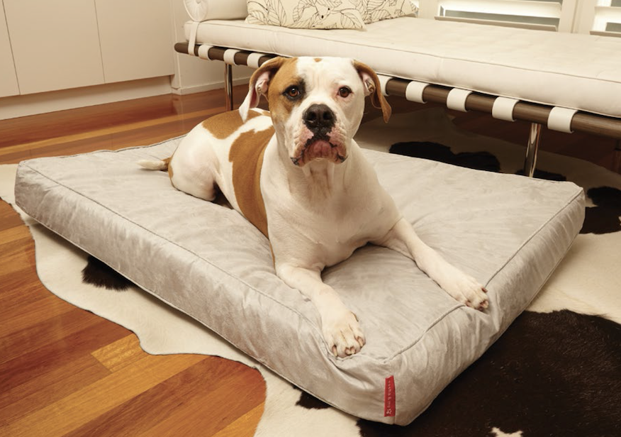 Custom Made Beds For The Big Dogs!