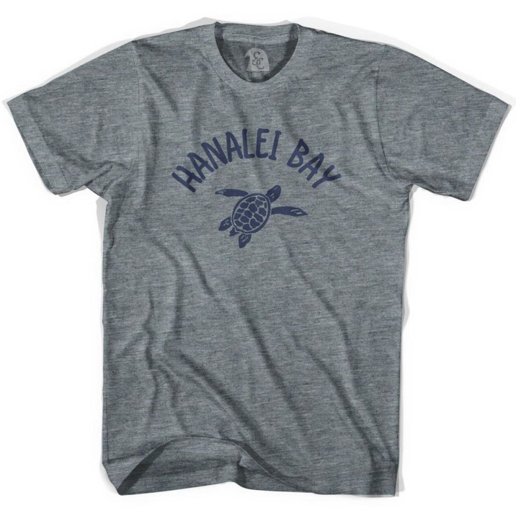 Hanalei Bay Beach Sea Turtle Youth Tri-Blend T-shirt - Athletic Grey / Youth X-Small - Turtle T-shirts