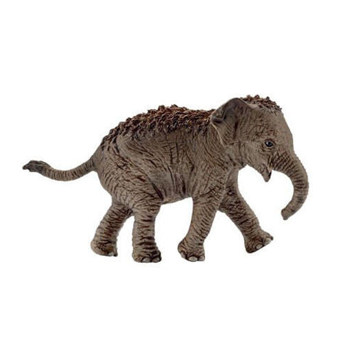 Schleich - Asian Elephant Calf