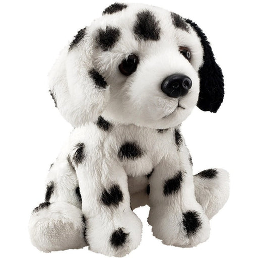 Antics: Mini Dalmation
