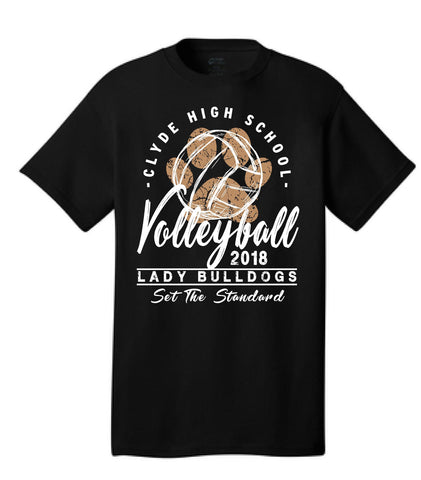 Previous Volleyball Designs