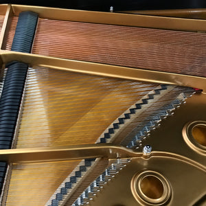 The Perils of Used Pianos - by Hannah Beckett, President of the Piano Technicians Guild of DC