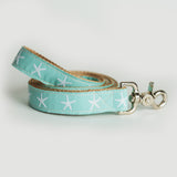 Sandy Neck Starfish Leash in Teal