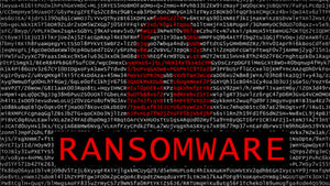 Ransomware on the Rise: BMG Has You Covered