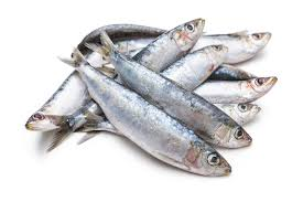 Whole Frozen Sardines $5.95/lb