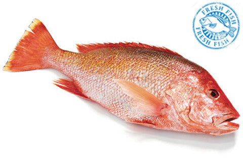 American Whole Red Snapper (Whole Fish)<br><b>  $11.95/LB