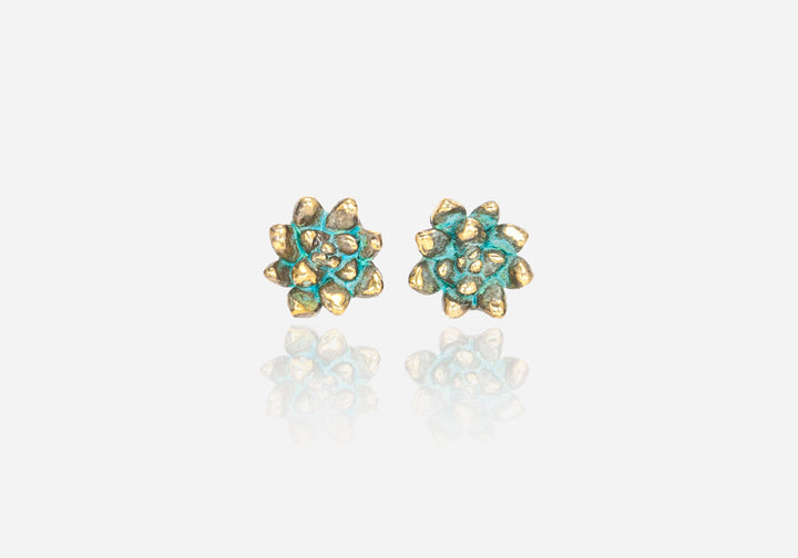 Succs Echeveria Stud Earrings, Large