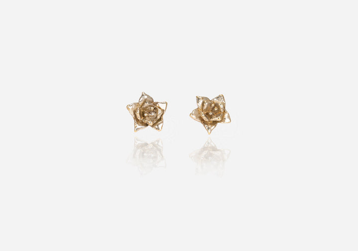 Succs Echeveria Stud Earrings, Small