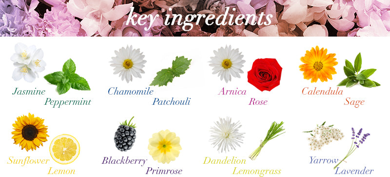 Ingredients Image