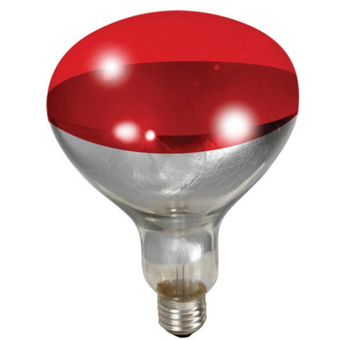 Brooder Bulb Red 250w