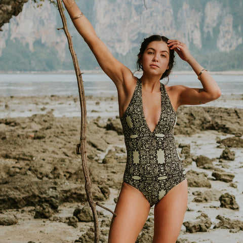 Albion Shell Shock, Trove V Neck Swimsuit