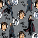 Cherry Pit Heating Pad - Harry Potter Comic Character