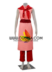 Dragonball Chi Chi Cosplay Costume