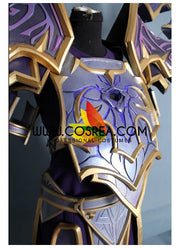 Warlock Voidheart Raiment World of Warcraft Cosplay Costume - Cosrea Cosplay