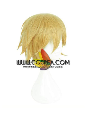Aotu World King Cosplay Wig