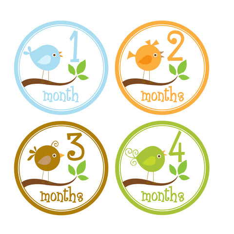Baby Birds Monthly Baby Stickers