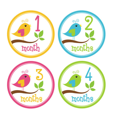 Girl Little Birds Monthly Baby Stickers