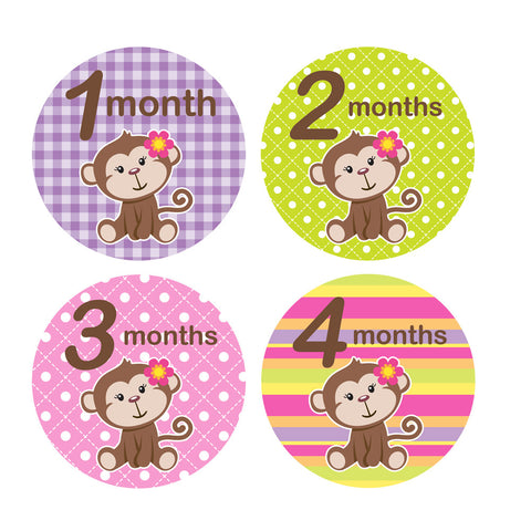 Girl Monkey Monthly Baby Stickers