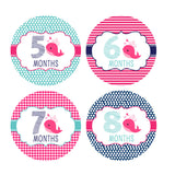 Girl Nautical Whale Monthly Baby Stickers onesie sticker - INKtropolis