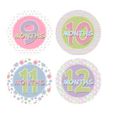 Pink, Purple, Green & Blue Monthly Baby Stickers onesie sticker - INKtropolis