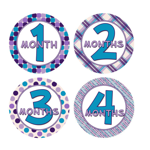 Purple & Blue Colored Monthly Baby Stickers