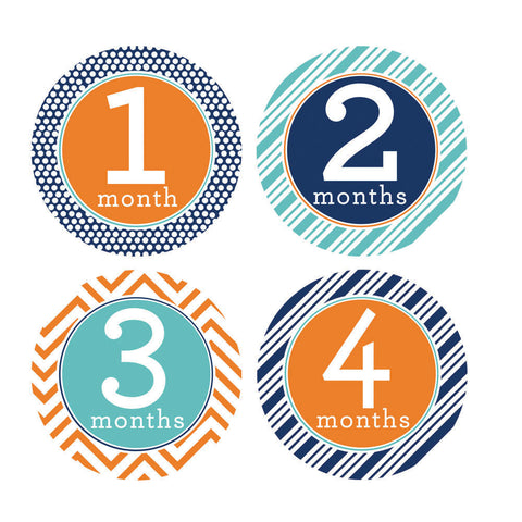 Trendy Tot Monthly Baby Stickers