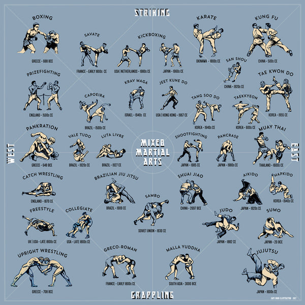 Mixed Martial Arts: A Style Guide (Light color)