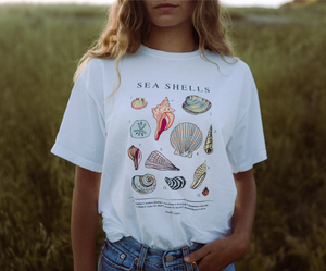 Vintage Seashell Tee - White - Shelly Cove