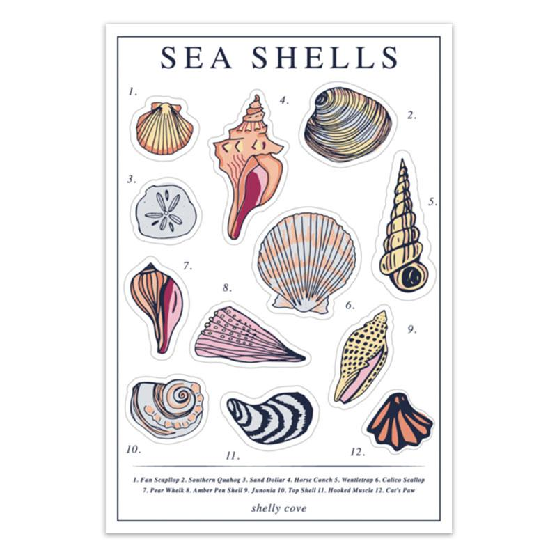 Vintage Seashell Sticker Sheet Shelly Cove