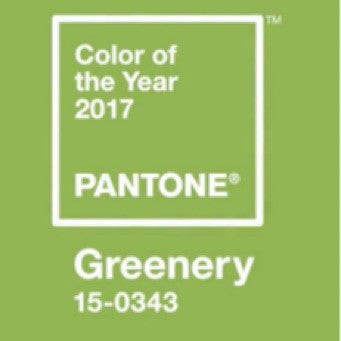 PANTONE OF THE YEAR 2017