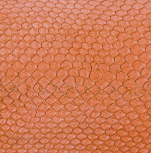 Premium Fish Skin Exotic Leather - Salamander Orange Craft & Repair Shadi