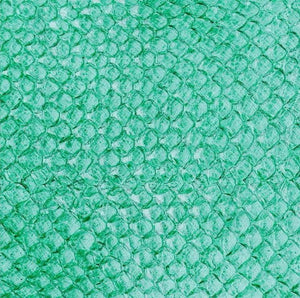 Premium Fish Skin Exotic Leather - Seafoam Craft & Repair Shadi