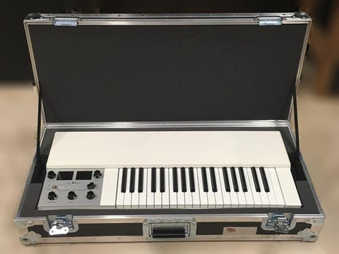 Mellotron MINI M4000D ATA Flight Case