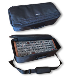 Gig Bag for Desktop Modules