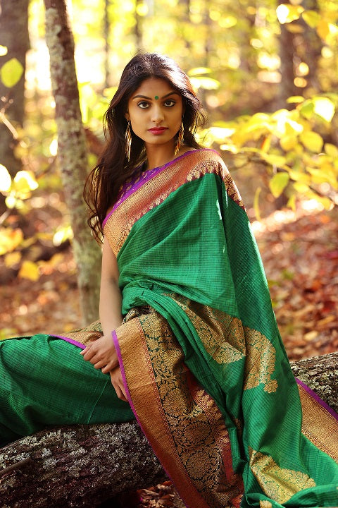 Handwoven Banarasi Sari- A Regal Drape for Indian Women!