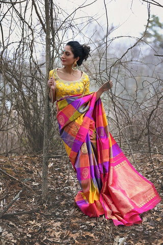 Multicolor silk saree with yellow blouse