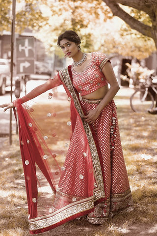 Pink Embroidered Bridal Lehenga with Dupatta