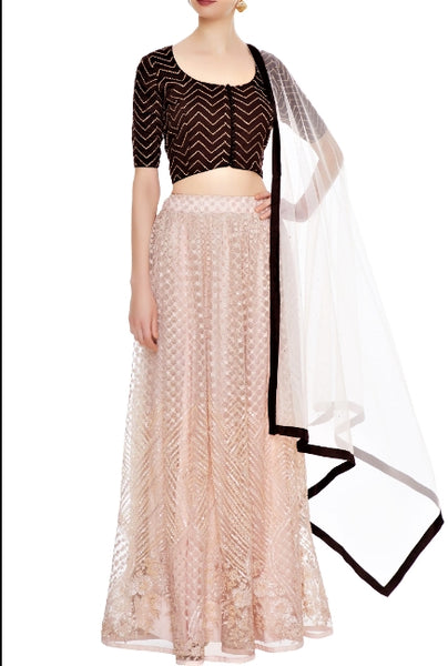 Buy baby pink net lehenga online in USA with coffee color blouse. Give a touch of elegance to your style with an exclusive range of Indian dresses, designer lehengas from Pure Elegance Indian fashion store in USA or shop online.-full view