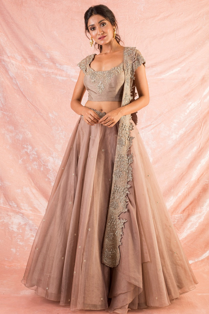 Brown Embroidered Organza Lengha With Blouse And Duppatta Online in USA-full view