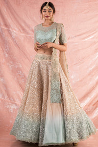 Blue/Pink Embroidered Organza Lengha With Blouse And Duppatta Online in USA-full view