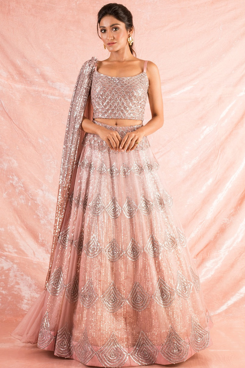 Grey/Pink Embroidered Organza Lengha With Blouse  Online in USA-full view