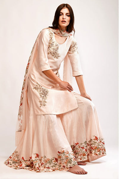 Buy soft pink embroidered chanderi kurta with floral applique sharara online in USA. You can find a fine collection of Indian designer dresses in USA at Pure Elegance clothing store. Our range of traditional Indian clothing, designer silk saris, designer suits,  at our online store is sure to leave you awestruck. -full view