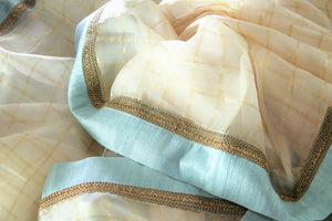 Slay in our exquisitely designed beige organza saree with meticulously embroidered border. Style this breath-taking sari with a turquoise blouse and steal the limelight. Shop handcrafted silk saris, printed saree, embroidered sari online or visit Pure Elegance store, USA.-details