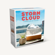 Storm Cloud: A Weather Predicting Instrument